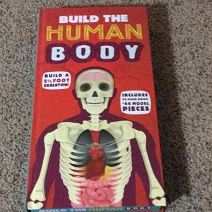Build the human body book and skeleton